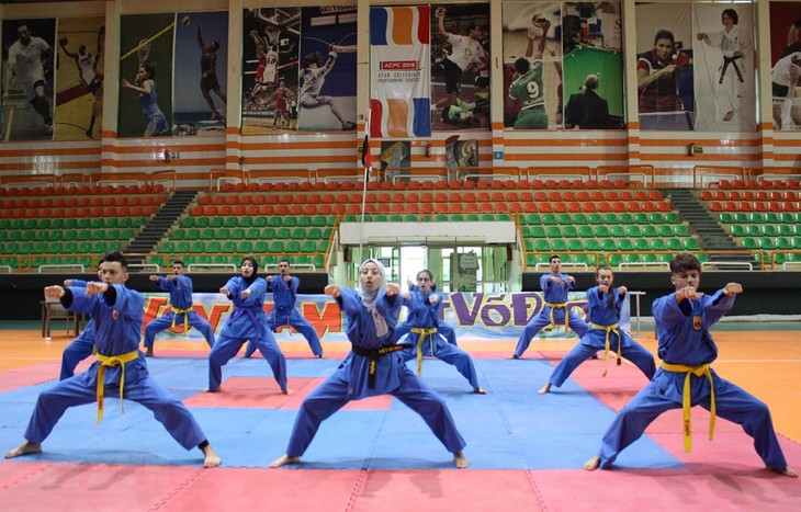 Vietnamese martial arts promoted in Egypt - ảnh 1