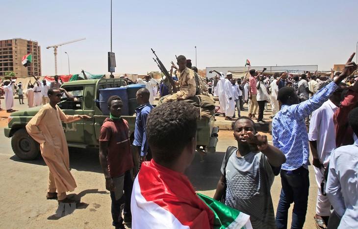 Vietnam contributes to Sudan's transition - ảnh 1