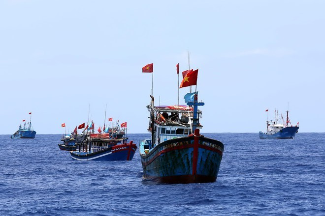 Vietnam Fisheries Society strongly protests China's fishing ban in East Sea  - ảnh 1