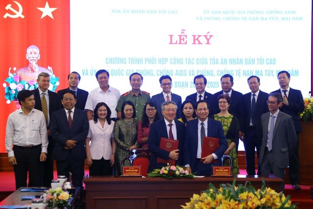 Vietnam to finetune laws on AIDS, drugs, and prostitution  - ảnh 1
