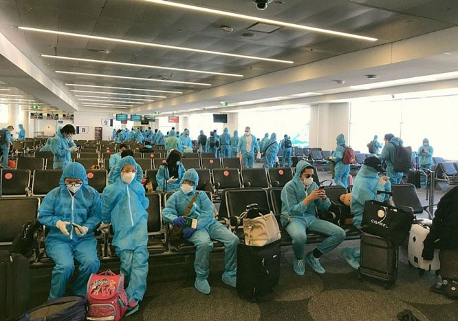 Vietnamese citizens repatriated from Japan - ảnh 1