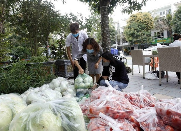 Hai Duong co-ops receive help selling their produce - ảnh 1