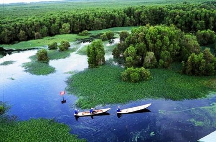 Tram Chim National Park - a Ramsar site - ảnh 1