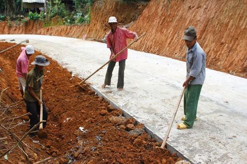 Einigung bei Modernisierung ländlicher Räume in Binh Dinh - ảnh 1