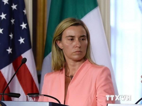 Italiens Außenministerin appelliert an Wiederaufnahme der strategischen Partnerschaft mit Russland - ảnh 1