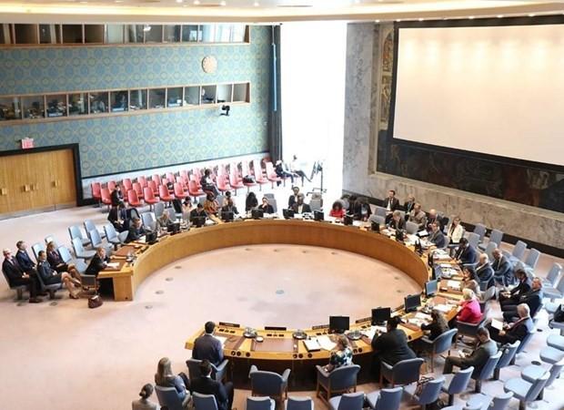 Vietnam kandidiert für UN-Sicherheitsrat: Verantwortung für eine friedliche Welt - ảnh 1