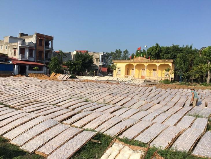 Dorf Lo Cuong und der Handwerksberuf zur Herstellung von Reisblättern - ảnh 1