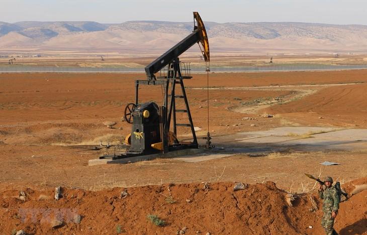 IEA warnt vor Überangebot auf dem globalen Ölmarkt - ảnh 1