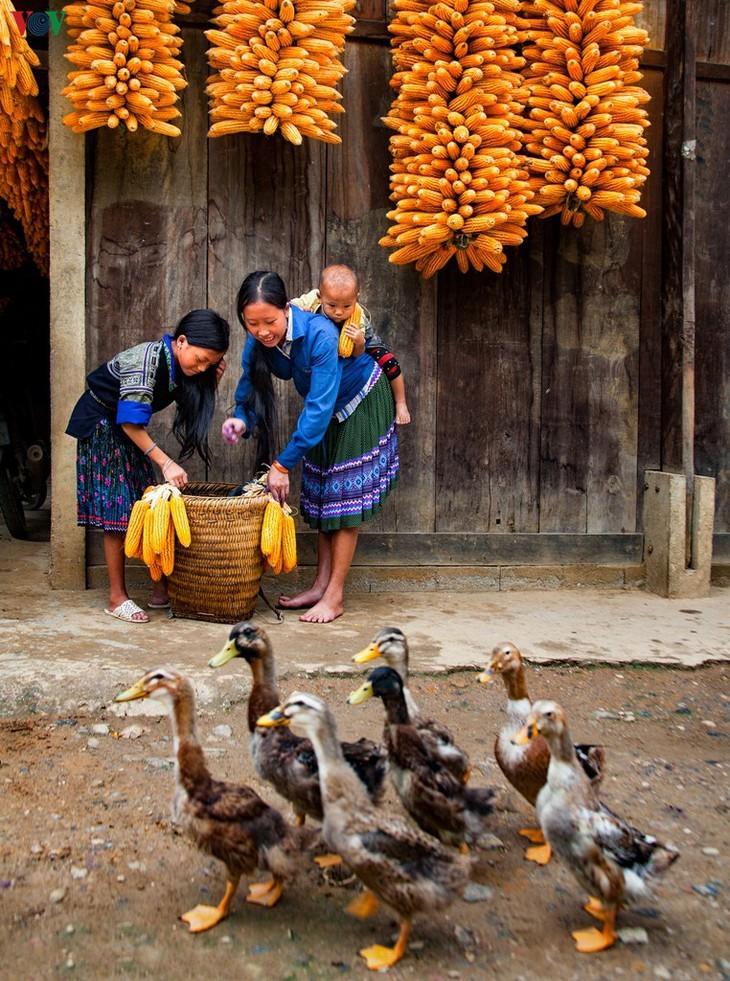 Stille Atmosphäre im Kreis Mu Cang Chai im Winter - ảnh 13
