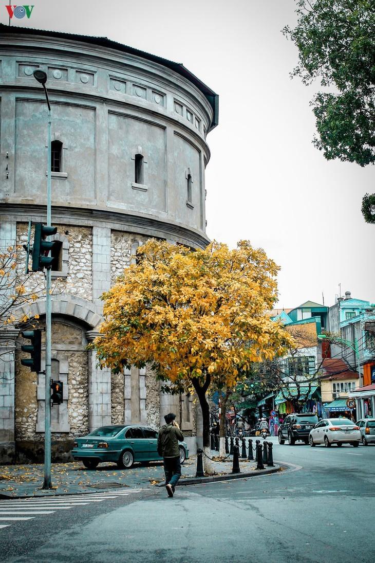 Die romanische Schönheit der Stadt Hanoi in der Zeit, in der Bäume ihre Blätter wechseln - ảnh 10