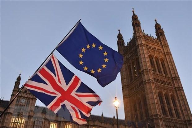 Meinungsverschiedenheit der EU-Mitgliedsstaaten in der Grenzöffnung - ảnh 1