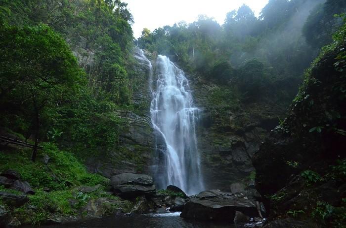Nationalpark Pu Mat als Heritage Park der ASEAN aufbauen - ảnh 1
