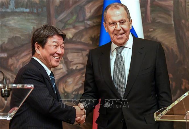 Japan und Russland einigen sich auf Wiederaufnahme der Verhandlungen über den Friedensvertrag - ảnh 1