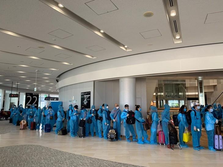 Rückholflug für mehr als 340 vietnamesische Staatsbürger aus Japan - ảnh 1