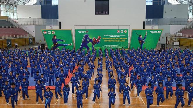 Turnier der vietnamesischen Kampfkunst Vovinam in Ho Chi Minh Stadt - ảnh 1