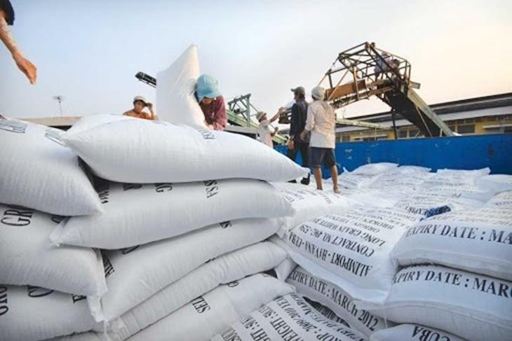 Vietnam gewinnt die Ausschreibung für Export von 30.000 Tonnen Reis zu den Philippinen - ảnh 1