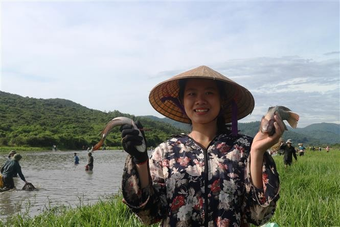 Fischfangfest Dong Hoa in Provinz Ha Tinh - ảnh 1