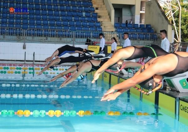 Nationale Schwimm- und Tauchmeisterschaft 2020 in Da Nang eröffnet - ảnh 1