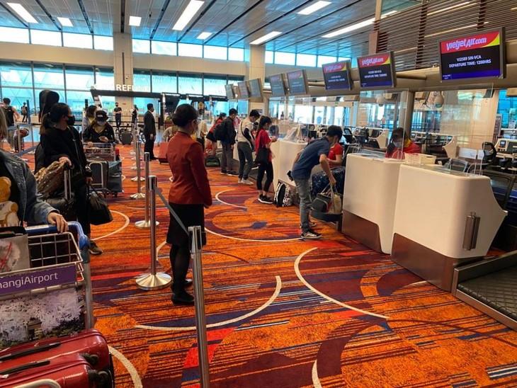 241 vietnamesische Staatsbürger aus Singapur nach Vietnam gebracht - ảnh 1