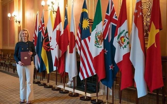 Britische Handelsministerin schätzt die Unterstützung Vietnams für die Teilnahme Großbritanniens am CPTTP - ảnh 1