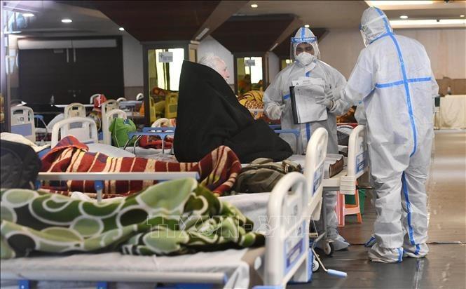 新型コロナウイルス、現在の感染者・死者数  死者301.1万人に - ảnh 1