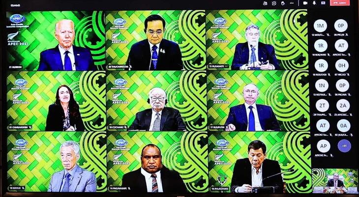Spitzenpolitiker der APEC einigen sich auf Verstärkung der Produktion und Lieferung von Covid-19-Impfstoffen - ảnh 1