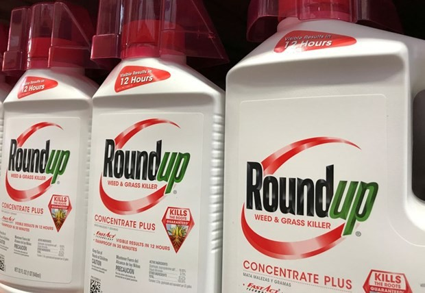 US court denies appeal in Roundup cancer case - ảnh 1