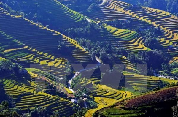 Photo contest promotes Vietnam's tourism - ảnh 1