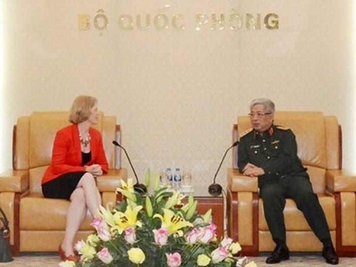 越南国防部副部长阮志咏会见新西兰驻越大使马修斯 - ảnh 1