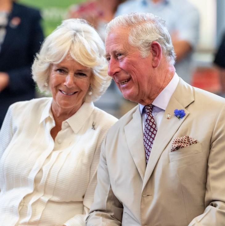 英国查尔斯王子即将对古巴进行正式访问 - ảnh 1