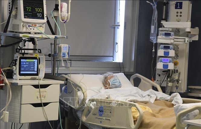 意大利外交部和内政部致信感谢越南支援意大利新冠肺炎疫情防控工作 - ảnh 1