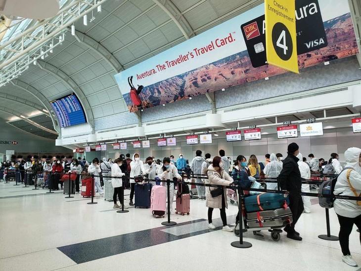 将近300名越南公民从加拿大运送回国 - ảnh 1