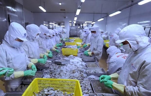虾行业对实现出口超35亿美元目标充满信心 - ảnh 1