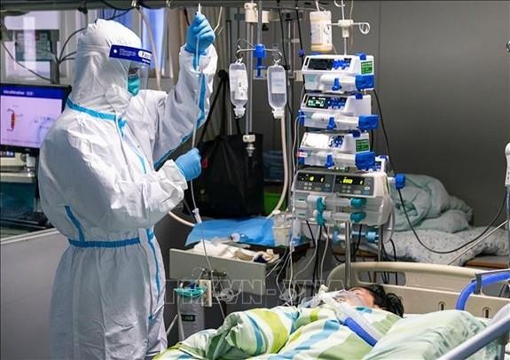全球新冠肺炎大流行病更新 - ảnh 1