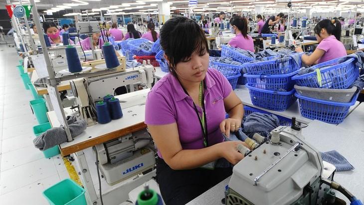 EVFTA:企业主动革新 - ảnh 1