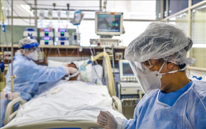 全球新冠肺炎确诊病例近1030万例 - ảnh 1