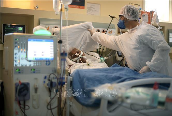 全球新冠肺炎疫情更新 - ảnh 1