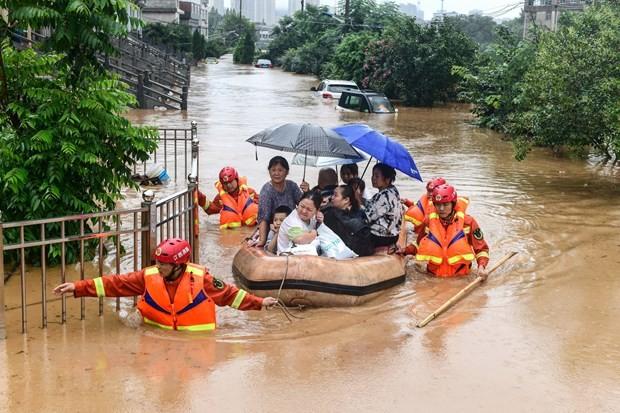 越南政府向中国灾区提供援助 - ảnh 1