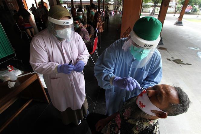 全球新冠肺炎确诊病例近2550万例 - ảnh 1
