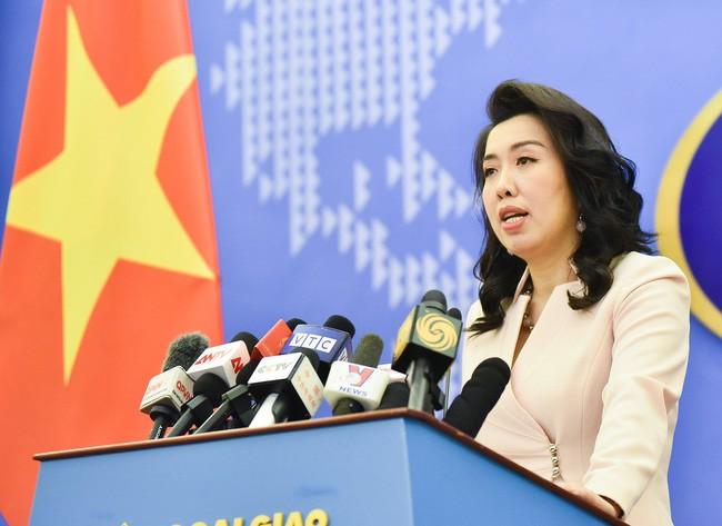 中国在东海海域进行演习是侵犯越南主权的行为 - ảnh 1