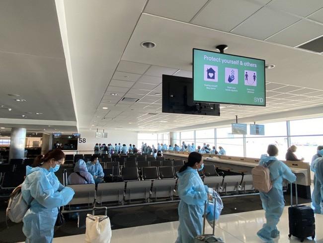 为越南公民安全回国安排包机航班 - ảnh 1