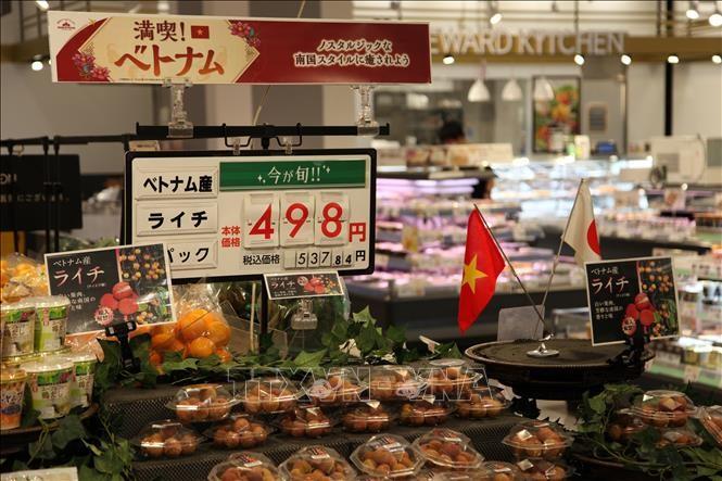 越南新鲜荔枝首次在日本鹿儿岛超市上架 - ảnh 1
