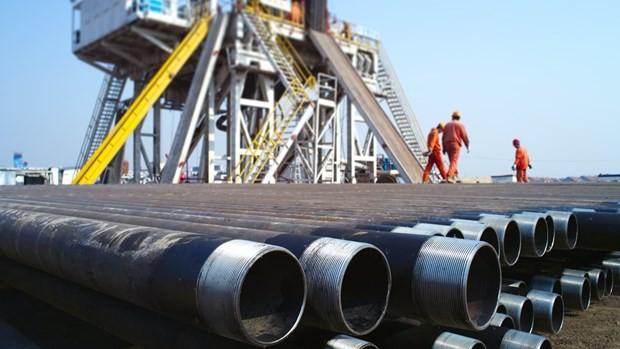 美国对越南输油管道反倾销行政复审终裁结果 - ảnh 1