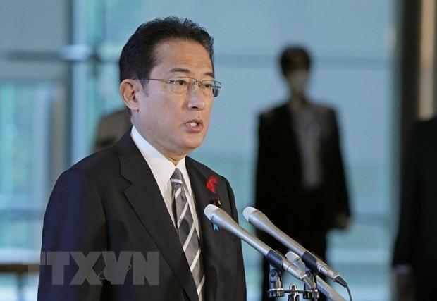 日本集中应对新冠肺炎疫情,促进实施对外政策 - ảnh 1
