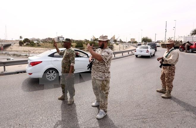 Libyen bestätigt Termin für Präsidenten- und Parlamentswahlen - ảnh 1