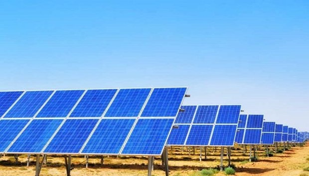 Indisches Unternehmen startet Inbetriebnahme von Solaranlagen in Vietnam - ảnh 1