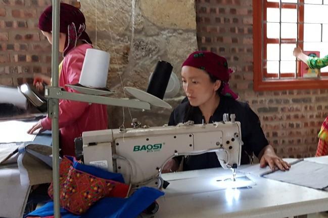 Genossenschaft Lanh Trang (weißer Lein) - Stütze der Bewohner in der Gemeinde Sa Phin - ảnh 1