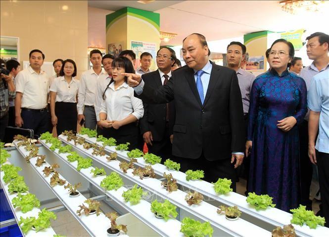 Premierminister Nguyen Xuan Phuc: Bauern sollen von Neugestaltung ländlicher Räume profitieren - ảnh 1