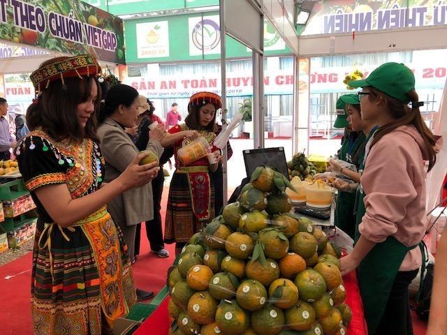 """Woche der """"Sanh-Orange"""" und OCOP-Produkte aus Ha Giang in Hanoi - ảnh 1"""