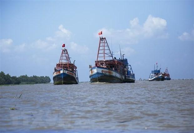 Vietnamesischer Fischerverband protestiert gegen Fischfangverbot durch China - ảnh 1